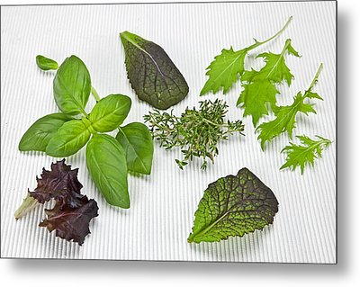 Salad Greens And Spices Metal Print by Joana Kruse