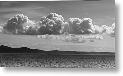 Salish Sea Metal Print by Tony Locke