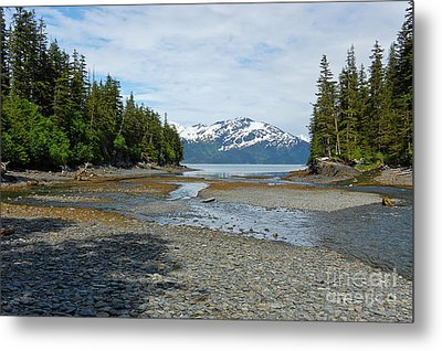 Salmon Run Lagoon Metal Print