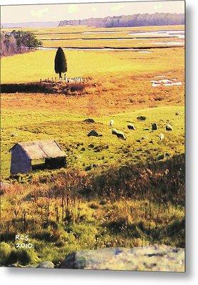 Salt Marsh Pasture Metal Print by Richard Stevens