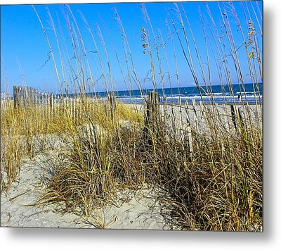 Sand Dunes Metal Print by Eve Spring