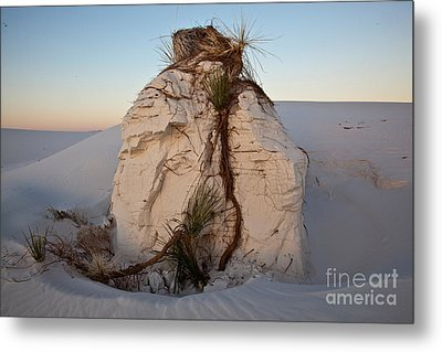 Sand Pedestal With Yucca Metal Print by Greg Dimijian