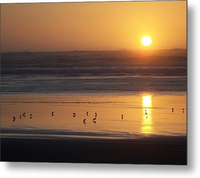 Metal Print featuring the photograph Sandpipers At Sunset by Peter Mooyman