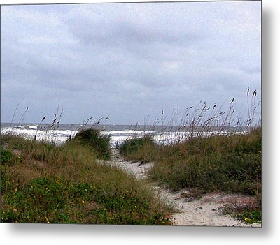 Sandy Path To The Beach Metal Print by Patricia Taylor