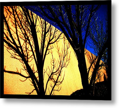 Metal Print featuring the photograph Santa Fe Afternoon by Susanne Still