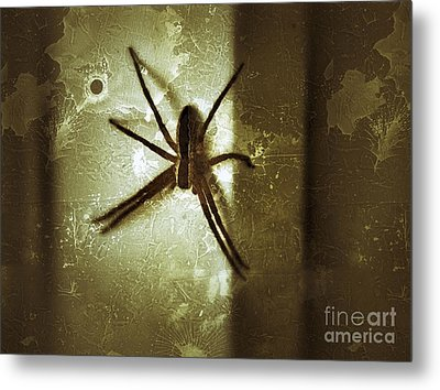 Scary Spider Metal Print by Christy Bruna