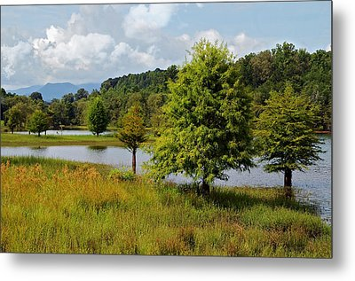 Scenic Lake With Mountains Metal Print by Susan Leggett