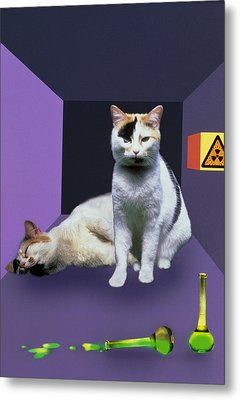 Schrodinger's Cat Experiment Metal Print by Mehau Kulyk