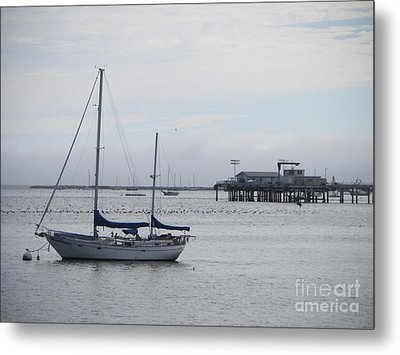 Metal Print featuring the photograph Sea Breeze by Leslie Hunziker