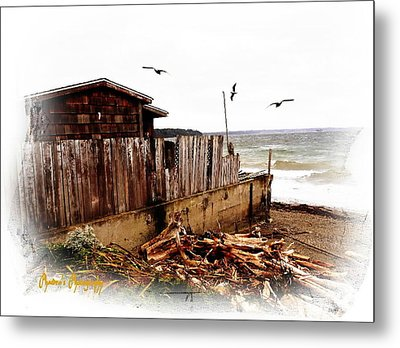 Metal Print featuring the photograph Sea Shanty by Sadie Reneau