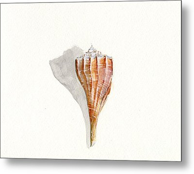 Sea Shell Watercolor Metal Print