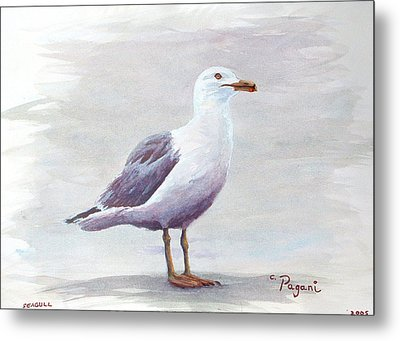 Metal Print featuring the painting Seagull by Chriss Pagani