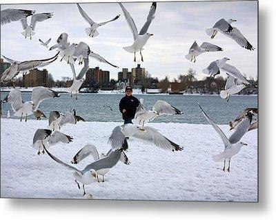 Seagulls In Flight Metal Print by Gordon Dean II