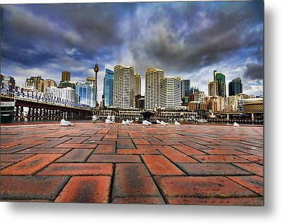 Seagull's Perspective Metal Print by Douglas Barnard
