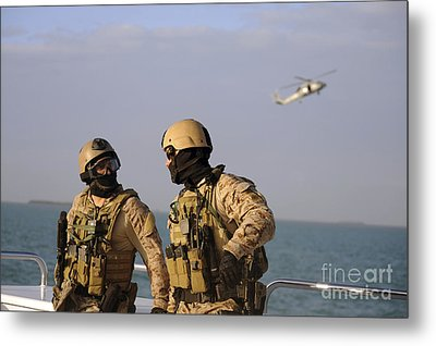 Seals Aboard A Rigid-hull Inflatable Metal Print by Stocktrek Images