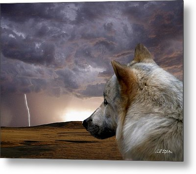 Searching For Home Metal Print by Bill Stephens