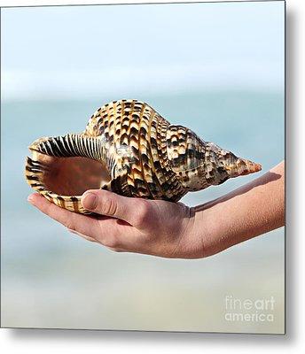 Seashell In Hand Metal Print by Elena Elisseeva