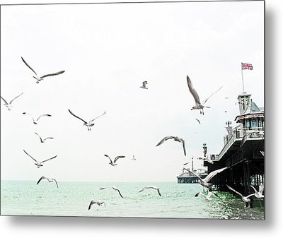 Seaside Seagulls Metal Print