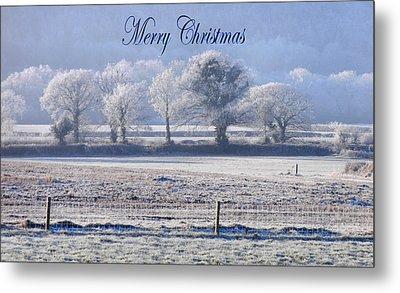 Seasons Greetings Metal Print by Debra Collins