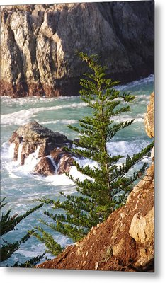 Secluded Big Sur Cove 2 Metal Print by Jeff Lowe