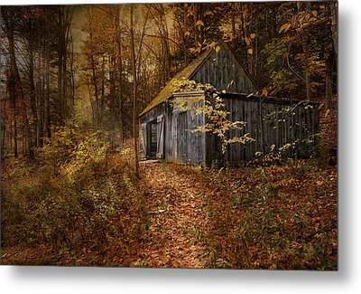 Secluded Metal Print by Robin-Lee Vieira