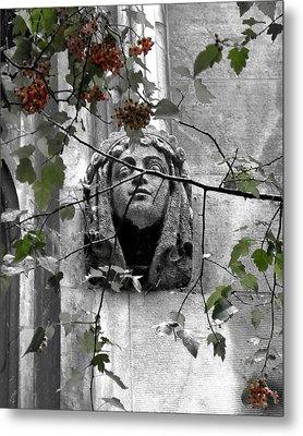 Seeming To Wonder At The Beauty 2009 Metal Print by Joseph Duba
