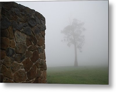 Sentinel In The Mist Metal Print by Sarah King