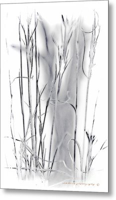 Sentinel Shadow Metal Print