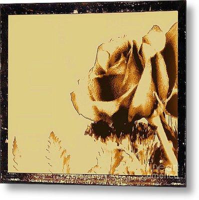 Sepia Rose Metal Print by Marsha Heiken