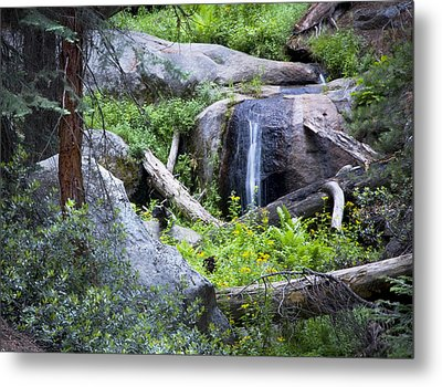 Sequoia Waterfall Metal Print by Anthony Citro