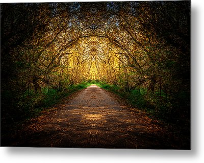 Serene Archway Metal Print by Anthony Rego
