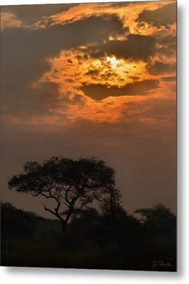 Serengeti Sun No. 1 Metal Print by Joe Bonita