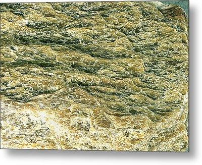 Sericite Mineral Metal Print by Dirk Wiersma