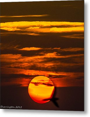Setting Sun Flyby Metal Print by Shannon Harrington