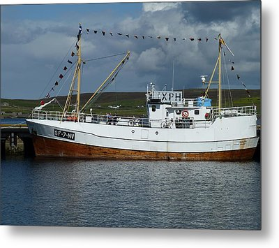 Sf-5-nv Visiting Shetland Metal Print by George Leask