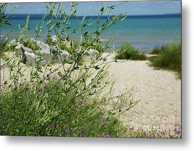 Metal Print featuring the photograph Shades Of Blue by Linda Shafer