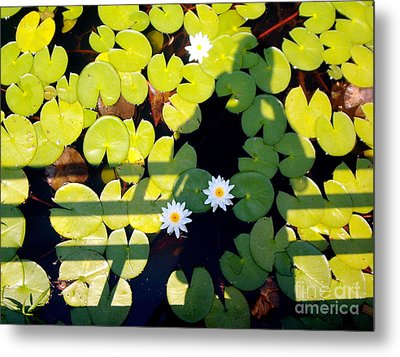 Metal Print featuring the painting Shadow Lilies by Gretchen Allen