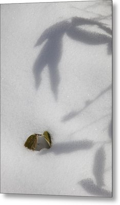 Shadow On Snow Metal Print