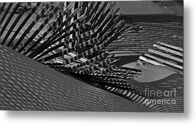 Metal Print featuring the photograph Shadows by Tamera James