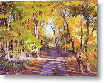 Shady Path At Fall In The Woods Metal Print