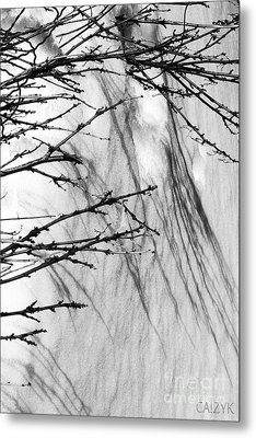 Metal Print featuring the photograph Shanow8 by Cazyk Photography