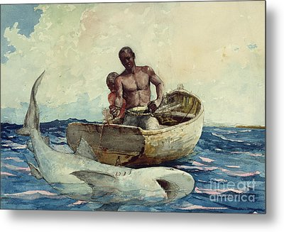 Shark Fishing Metal Print by Winslow Homer