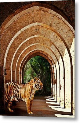 She Waits.... Metal Print by Sharon Lisa Clarke
