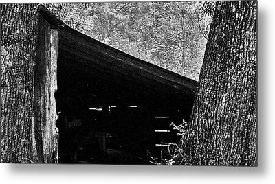 Metal Print featuring the photograph Shed Between Two Oaks Near Alexandria by Louis Nugent