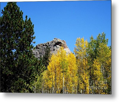 Sheep Nose Mountain In The Autumn Metal Print by Donna Parlow