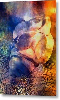 Shell Metal Print by Mauro Celotti