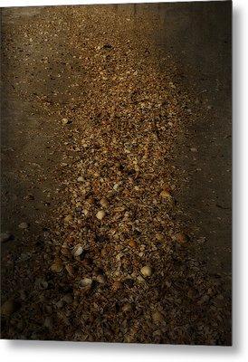 Shell Road Metal Print by Mario Celzner