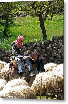 shepherds in Golan Metal Print