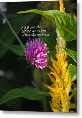 Shine Encouraging Pink And Yellow Flower Photograph Metal Print by Jai Johnson