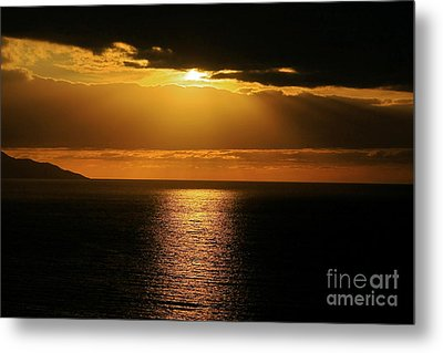 Metal Print featuring the photograph Shining Gold by Nicola Fiscarelli